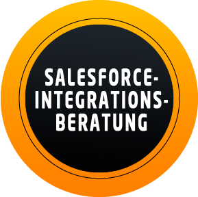 Salesforce Integrations Beratung